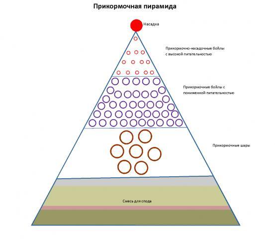 Название: Прикормочная пирамида.jpg Просмотров: 217  Размер: 26.0 Кб