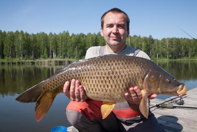 Название: Карп 6600. Рыбалка 24.05.14г..jpg Просмотров: 63  Размер: 42.6 Кб